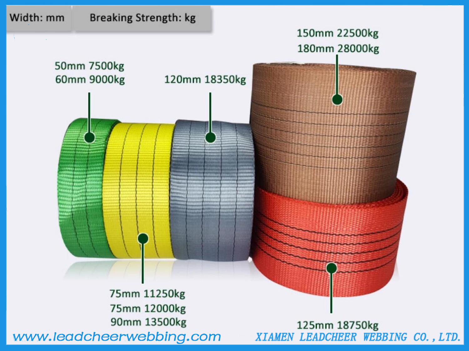 High Strength Polyester Webbing for tie down straps